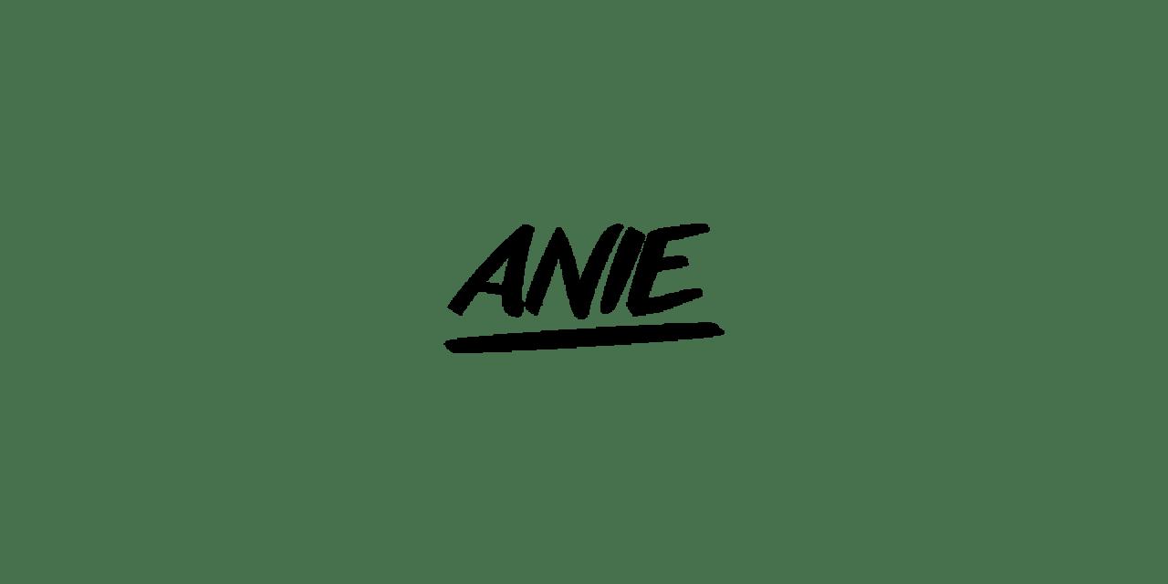 Woodstoig_Festival_Annie_Logo